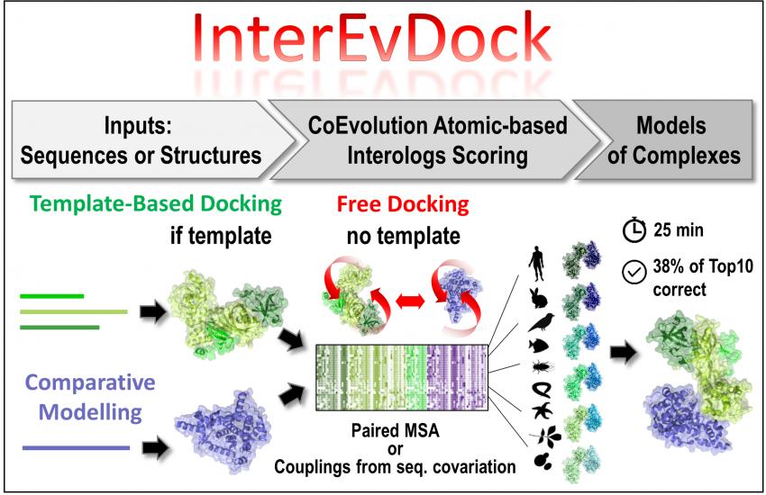 FigureTopic2_InterEvDock3