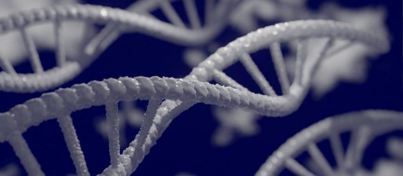 dna-genome-department